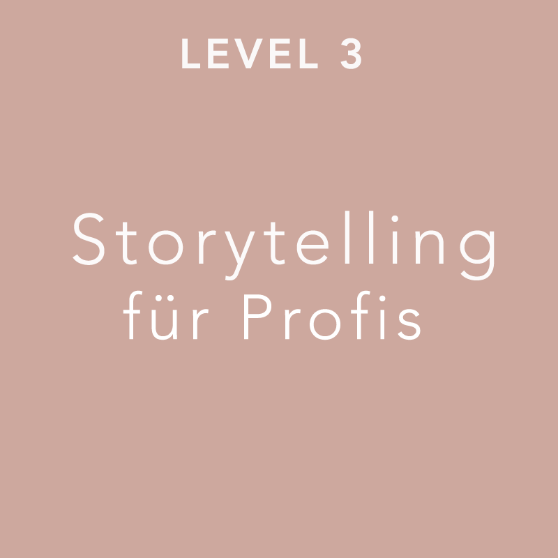 Kachel Level 3 Storytelling für Profis